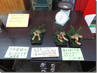 arasiyama-walk (32)