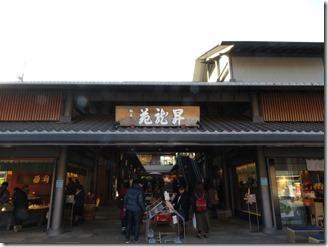 arasiyama-walk (35)