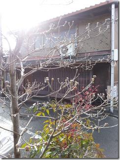 daimonjiekidentoujitu (1)