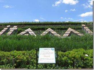 itami-skypark (61)