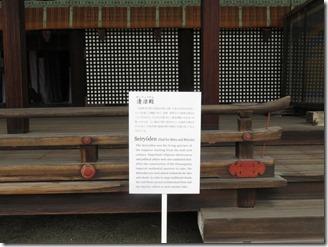 kyoto-gosyonai (20)