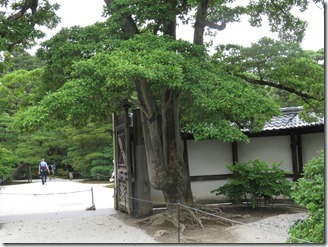 kyoto-gosyonai (48)